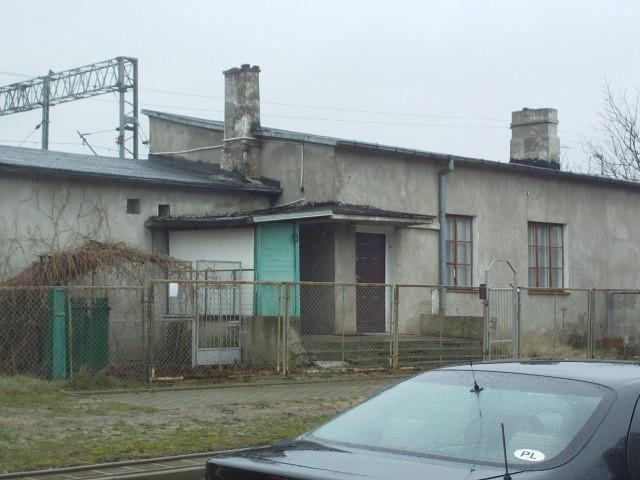 Warszawa golabki 1