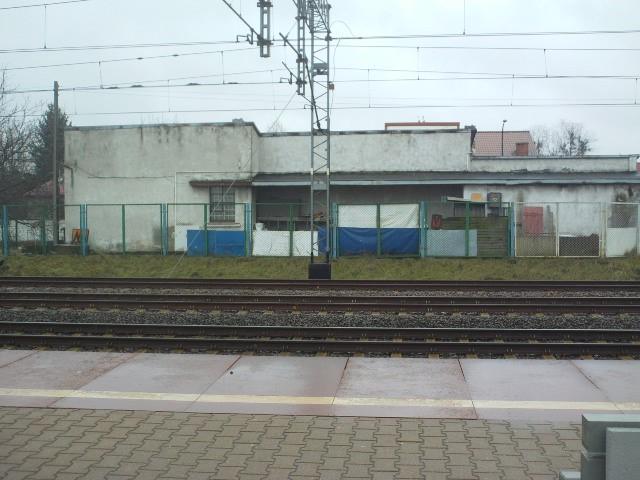 Warszawa Golabki 7