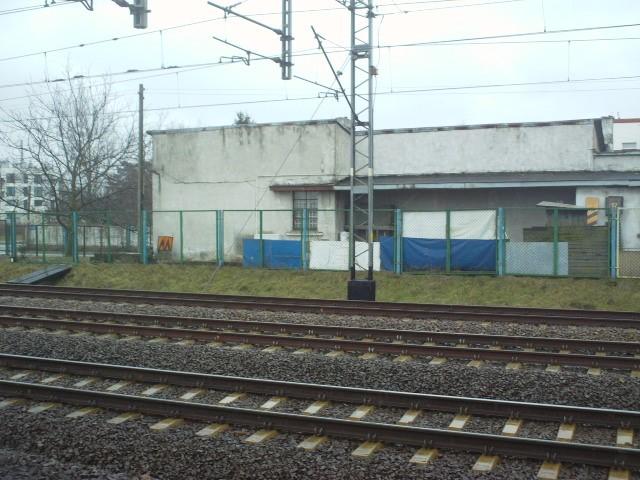 Warszawa Golabki 9