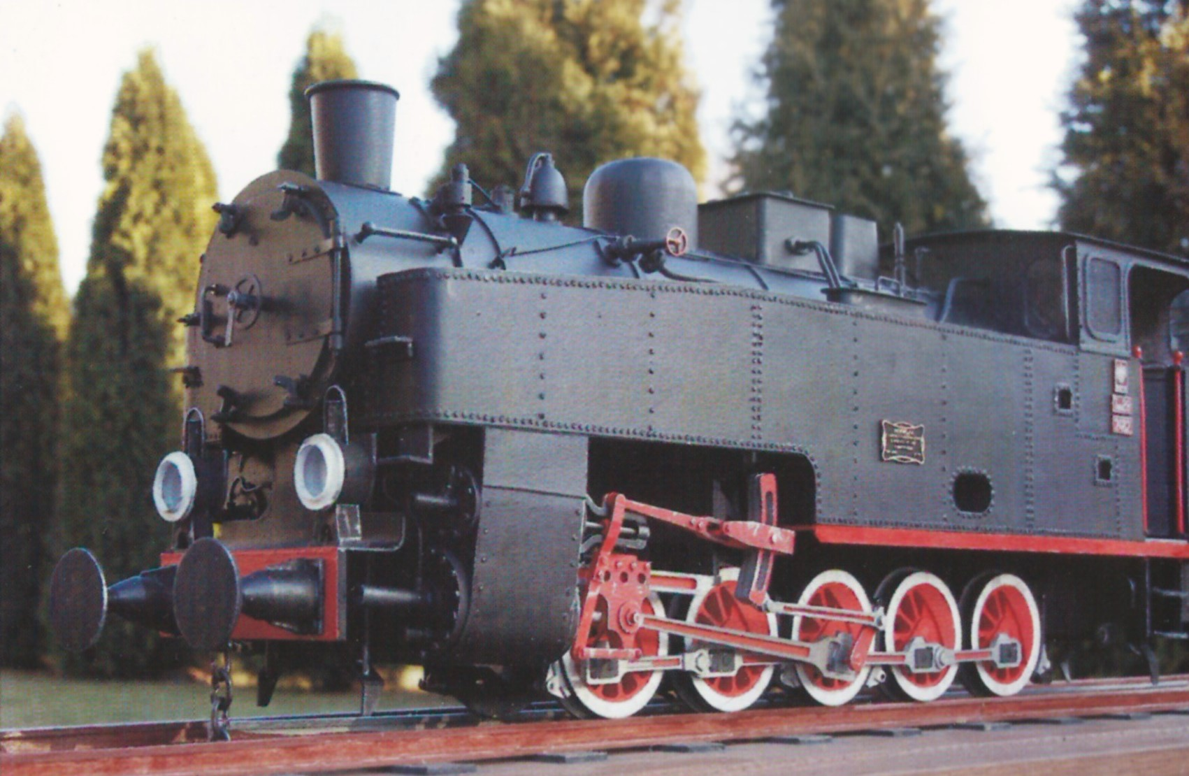 tw 29 narrow gauge steam engine